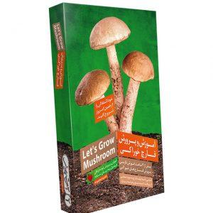 آموزش پرورش قارچ خوراکی در منزل